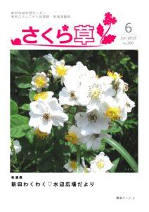 さくら草2019.6月号
